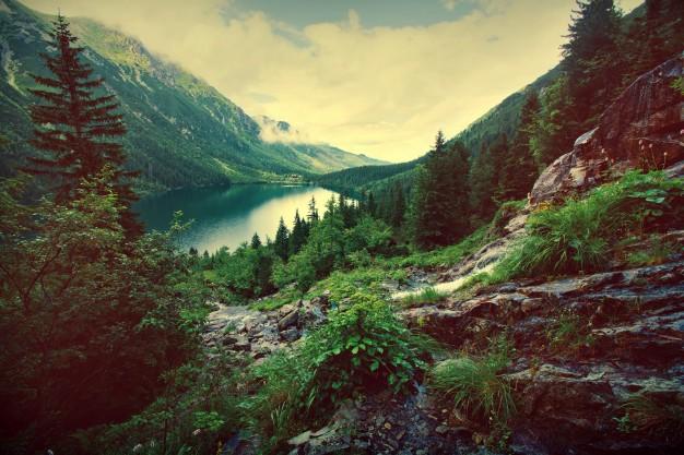 Kontrola i nadzór Inspekcji Ochrony Środowiska
